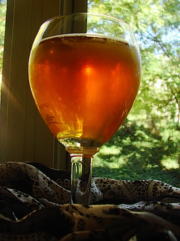 beer pour in glass 3.JPG