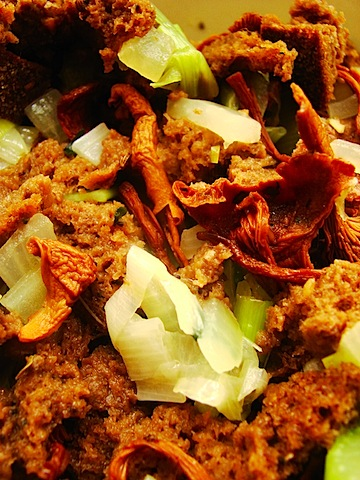 18 Stuffing Closeup b.jpg