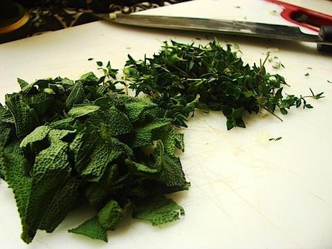 7 Herbs 1b.jpg