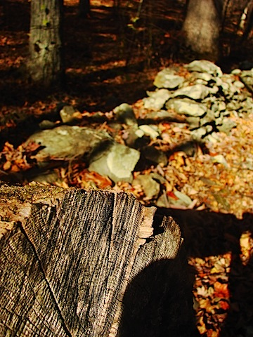 stone wall with log.JPG